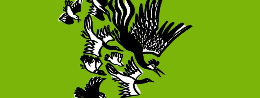 Le cantique des oiseaux d'après Farid Al-Din Attar