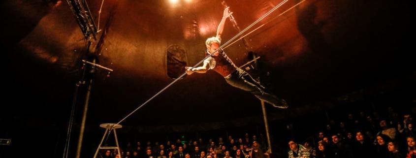 L'Homme-Cirque de David Dimitri