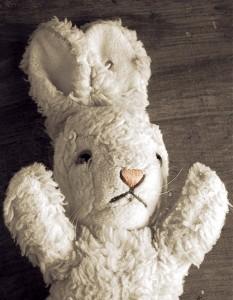 lapin-blanc-lapin-rouge-de-liranien-nassim-soleimanpour