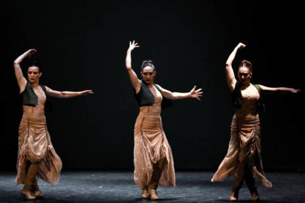 / critique / A Chaillot, un Flamenco au pluriel